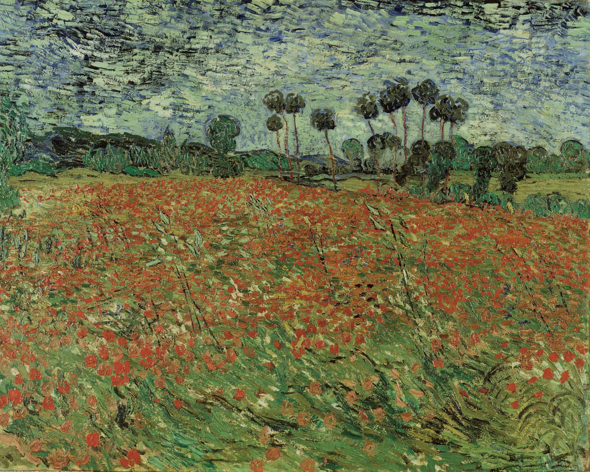 Vincent van Gogh - Papaverveld