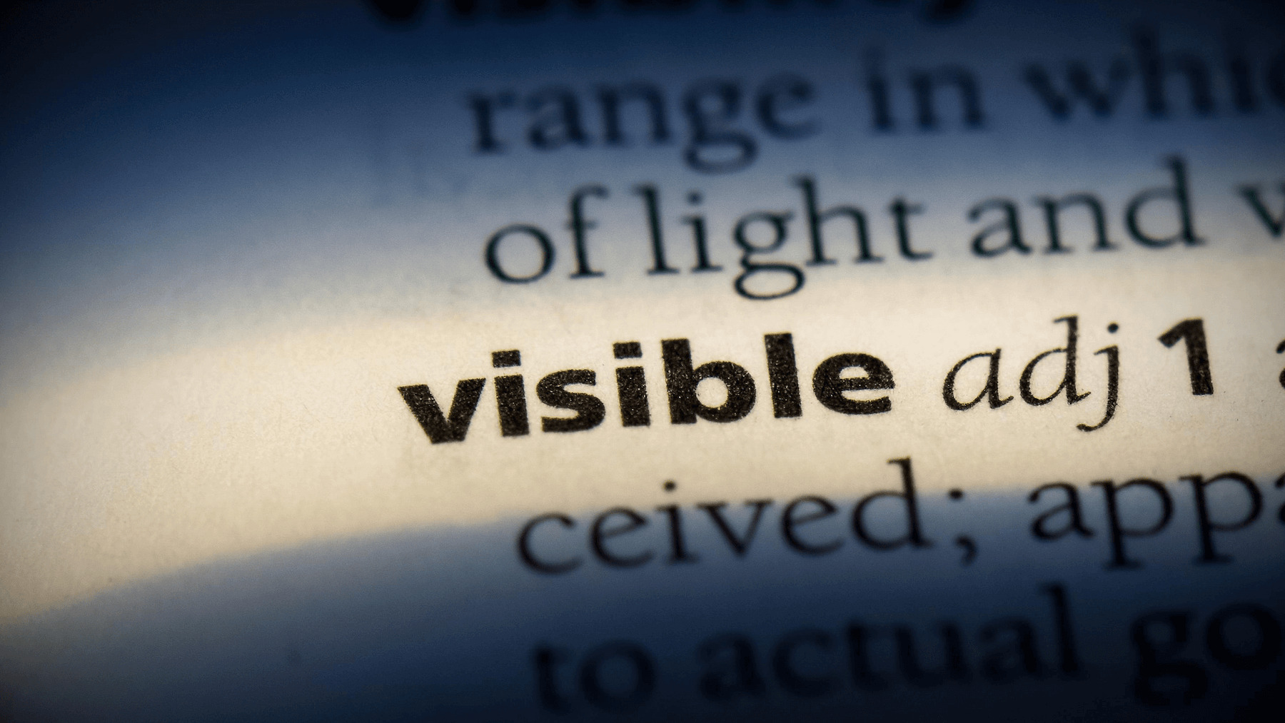 What is Visible Thinking in the Museum?