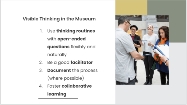 Visible Thinking in the Museum by Claire Bown