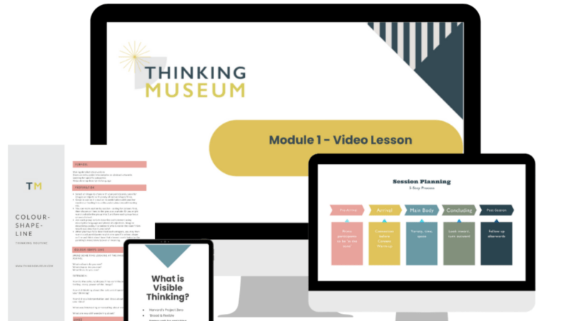 The six core elements in my popular Visible Thinking in the Museum Online (VTMO) course