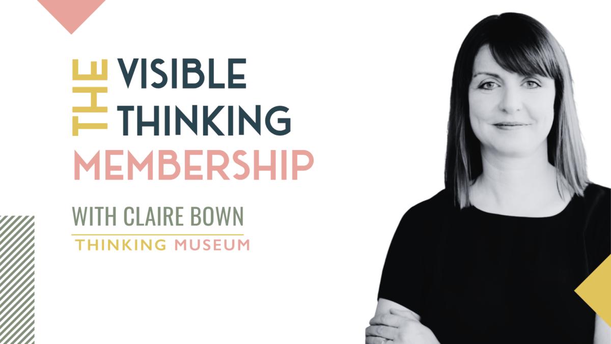 The Visible Thinking Membership